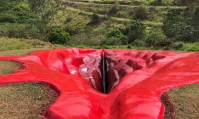 Escultura de vagina gigante alimenta guerras culturais no Brasil